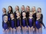 7 Friese Titels voor Turn- en Gymsport Dokkum