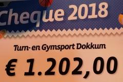 turnengymsportdokkum-psa2018-2